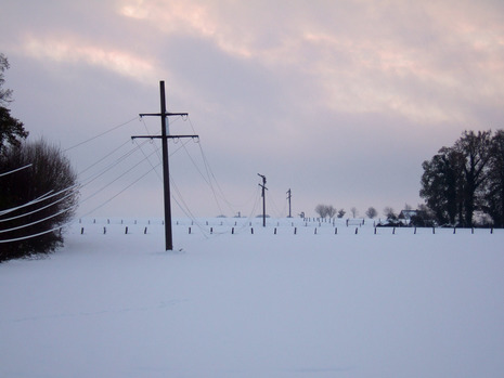 Unter dem Gewicht dicker Eisschichten kollabierte Freileitung während des Münsterländer Schneechaos